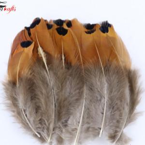Набор перьев для декора 10 шт #12119